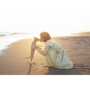 光と被写体のポーズがロマンチックで印象的な写真。 古田晃広さんが海が好きだそうで、海が撮影地になっている写真も多く見られます。