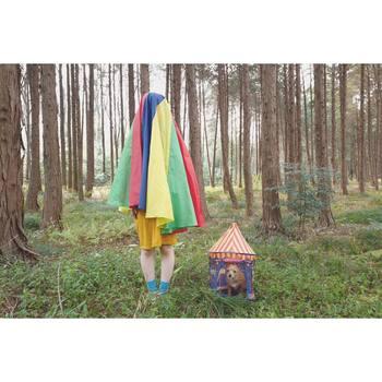 虹色のマントをかぶってるのでしょうか? ワンちゃんはサーカス小屋に入ってるのかな? アーティスティックな写真ですが温かみも感じられる幻想的で不思議な写真ですよね。