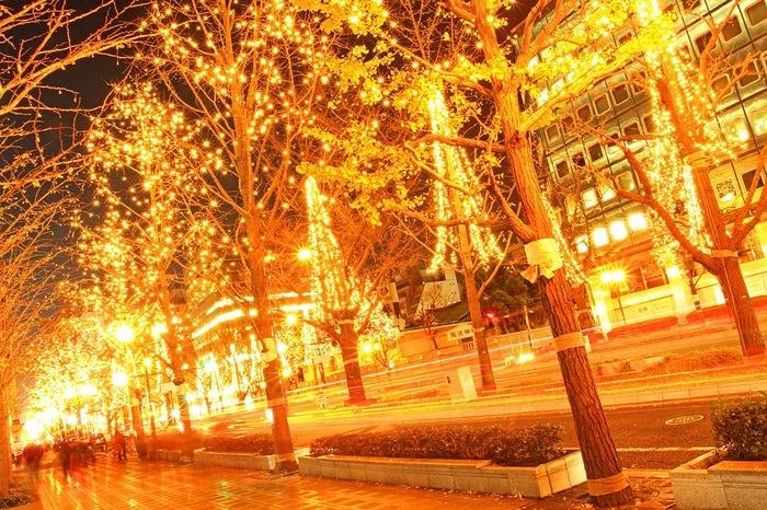 大阪市内における交通の大動脈、御堂筋では「梅田」から「なんば」まで全長約4キロメートルには、全ての街路樹にあかりが灯されます。