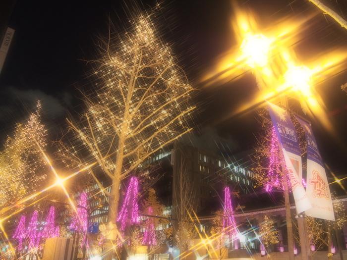 同じ大阪市内でも、エリアによって街の雰囲気はガラリと趣を変えます。御堂筋イルミネーションは8つのエリアに分けられ、エリアごとに多彩な色で街路樹が装飾されます。