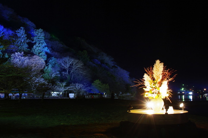 淡紫色にライトアップされた嵐山を背景に、明るく輝く生け花のイルミネーションは、嵐山花灯路の魅力を引き立てています。
