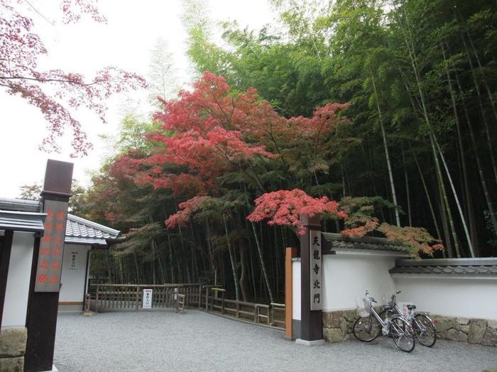 この道には「天龍寺」の北門がありますので、時間がない方や次に紹介する「野宮神社」へ参拝しない方は、この門から「天龍寺」境内へ入りましょう。