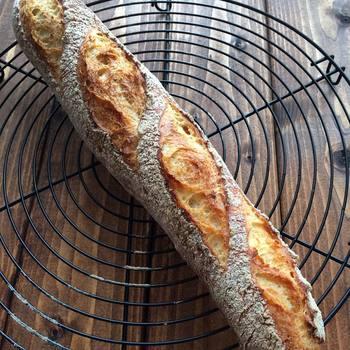 酒粕を酵母として、こんなに美味しそうなパンも焼けますよ!