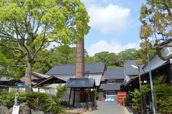 自然豊かな千葉の川沿いの町に、小さなあたたかい醸造所「寺田本家」はあります。