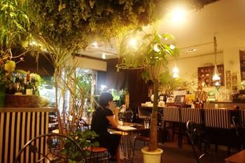 店内にも観葉植物が置かれており、ほっとする雰囲気です。