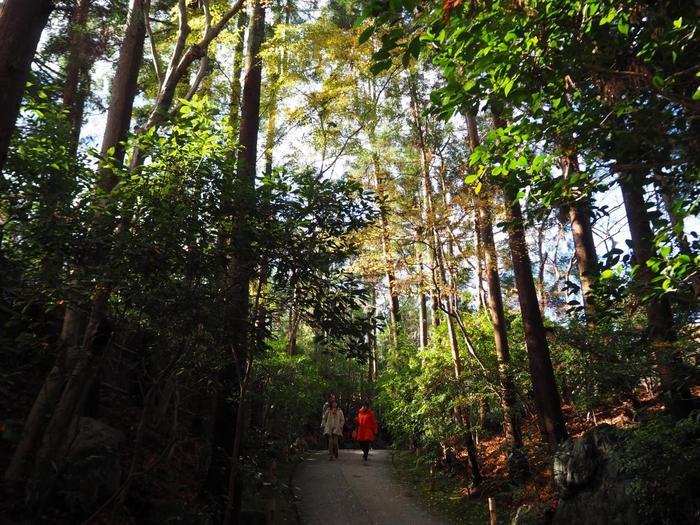 【「大河内山荘庭園」は、竹林の道からすぐの場所にある、小倉山の斜面に開かれた広大な庭園です。画像は、受付から山荘へと続く道。】