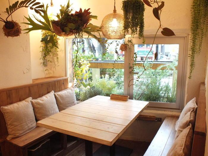 お肉、お魚、乳製品、卵などを全く使っていないヴィーガン料理やスイーツが楽しめるカフェ。ハンギングのグリーンが印象的な店内です。