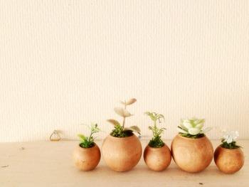 双子の姉妹、hiroさんとjunさんが作る、シンプルでナチュラルな雑貨がたくさん揃います。小さくて可愛らしいコロコロ丸い植木鉢には、藻とイミテーショングリーンが飾られています。 木の植木鉢は、こんなに小さいけれど、とっても丁寧に作られています。