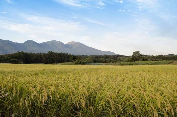 長野県東御市(とうみし)御牧原(みまきはら)の山の上、美しい風景に囲まれたところにこのお店はあります。