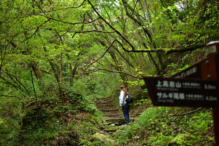 都会が35度を越える猛暑日でも、御岳山では30度程度と穏やかなので、爽やかな森林浴が楽しめそう。