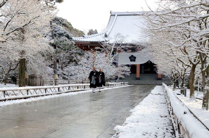【宗祖弘法大師の生誕1200年の記念事業として、昭和50(1975)年に建立した、総本山智積院の中心的な建物「金堂」。本尊は大日如来。】