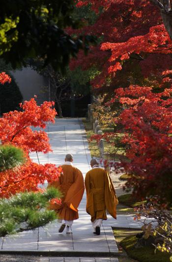 """【智積院」は、一般学徒や他宗の僧侶にも開かれた""""学問""""を修める寺院。】"""