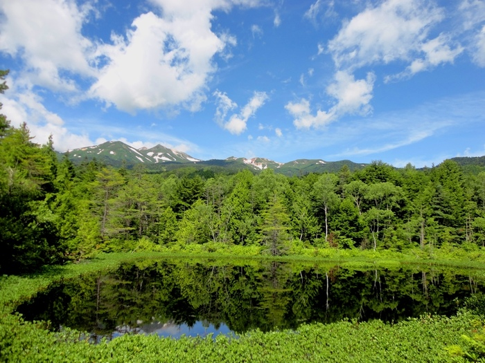 大小様々な池が点在する一ノ瀬園地の中でも、牛止池は乗鞍岳を臨むビューポイントとして人気があります。池の周囲は静寂に包まれ、乗鞍岳を背景に、波ひとつない水面が周囲の森を映しだし、絵葉書のような素晴らしい景色を臨むことができます。