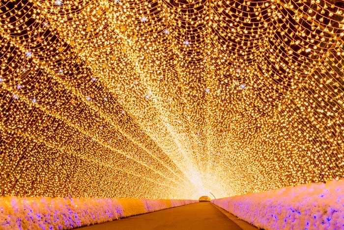 シャンパンゴールドに輝く灯りが無数に煌めく「光のトンネル」は、訪れる人々をやさしい灯りで包みこみます。回廊状になっている光のトンネルの長さは、200メートルに及び、なばなの里イルミネーション最大のみどころです。