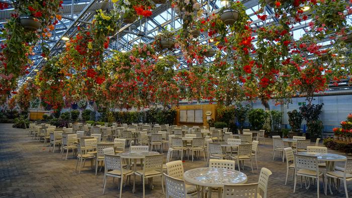 ベゴニアガーデン内は、徹底した温度管理がされているため、どの時期に訪れても快適に過ごすことができます。今にも天井から降り注ぎそうな色とりどりの花々を眺めながら、ガーデンテーブルでくつろぐという贅沢なひとときを過ごしてみませんか。