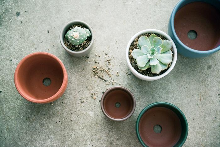 SUEKIは、器ブランドである「SUEKI CERAMICS」のほか、「SUEKI YARD」という植木鉢のブランドも展開。用途こそ違いますが、どちらもぽってりと柔らかいフォルムに、吸い付くような手触り、生活に馴染む色展開がSUEKIらしさをかたちづくっています(画像提供:SUEKI)