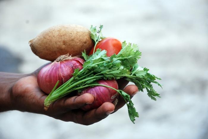 オーガニック食品は、一般的に安全性が高いと言われています。これは、農薬などを使った食品に対して、科学的危害リスクが低いためです。また、オーガニック食品だと認められるには、一定の検査をクリアしなければなりません。