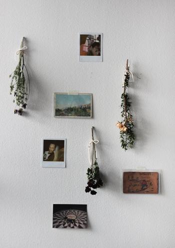 写真やポストカードなど思い出と共にスワッグを飾っても素敵!