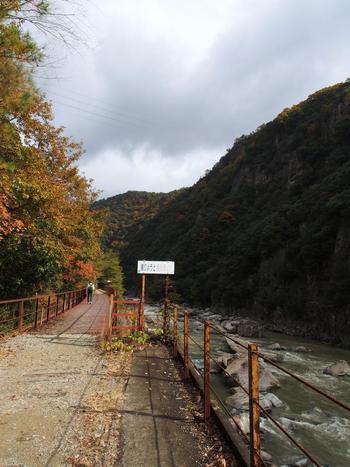 現在は廃線となっている旧国鉄福知山線の生瀬駅と道場駅の間は、武庫川渓谷に沿って線路が敷かれていました。そのため、武田尾廃線跡では、武庫川渓谷の風光明美な景色を臨みながらハイキングを楽しむことができます。