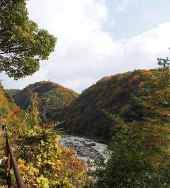 武田尾廃線跡には、所々で小さな展望台があります。展望台から眺める武庫川渓谷は絶景そのものです。