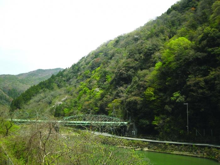 武庫川渓谷は四季折々で美しい姿を見せてくれます。春は若葉が鮮やかな緑となり、夏は樹々が深緑となり、秋になると山々が見事に紅葉します。