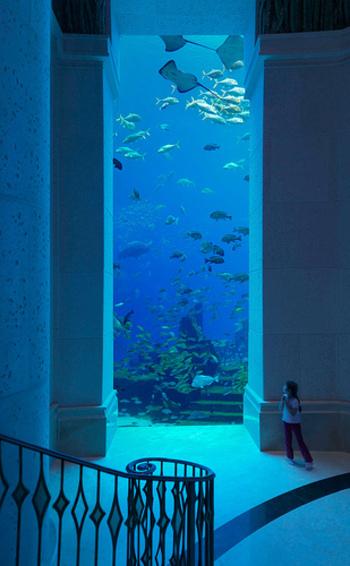 そしてアトランティスは、ホテル全体が水族館仕様になっているのが見所。廊下を歩いているだけで、海底遺跡を散歩しているような気分になれそうですね。