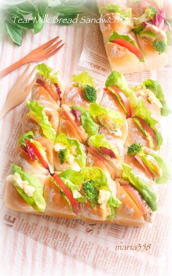 定番野菜のトマト・きゅうり・レタスにローストチキン、卵サラダ、ポテトのカレーマヨサラダなどを挟んだ、バラエティー豊かなサンドイッチ。みんなでちぎって分け合って!