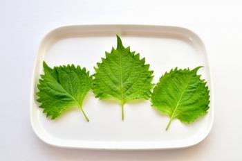 大葉は、あるとなしでは味のアクセントが違います!とくにイカ納豆巻きにおすすめ!淡白なイカと納豆に大葉を合わせれば、あっさりとした味わいになります。