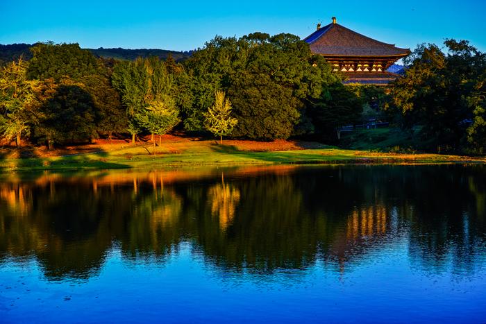 大仏池は、大仏殿の北西に位置する池です。池の周囲には豊かに樹々が生い茂り、鏡池とは異なる趣が漂っています。
