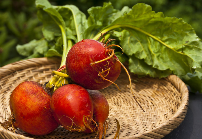 ロシア料理のボルシチに使われている食材として有名な『ビーツ』は、濃い赤紫色の見た目ですが、実はほうれん草と同じアカザ科の野菜です。ショ糖が含まれているので甘味があり、日本では火焔菜(かえんさい)とも呼ばれています。硬い野菜なので、缶詰のものを使うと手軽で便利ですよ。今回は、食卓を華やかにしてくれる『ビーツ』を使ったレシピをご紹介します。