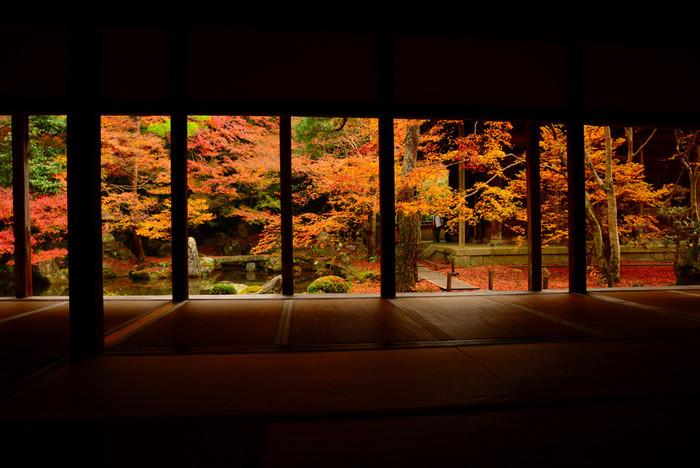 東京から2~3時間。歴史あるお寺や建造物と自然とが共存する美しい都、京都。ぶらぶらと散策するだけでも、心が洗われます。京都が一番美しく彩られるのは、やっぱり秋。お寺や建造物と真っ赤な紅葉のコントラストは、圧巻です。一年のうちで最も美しい秋の京都へ足を運んでみてはいかがでしょうか。