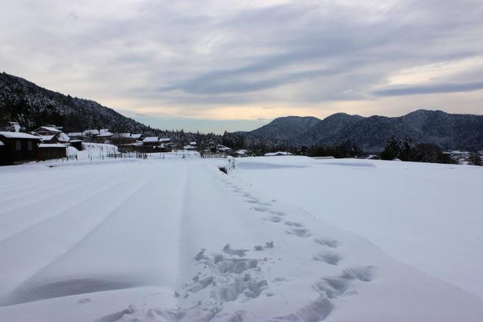 【雪に覆われた正月頃の大原】