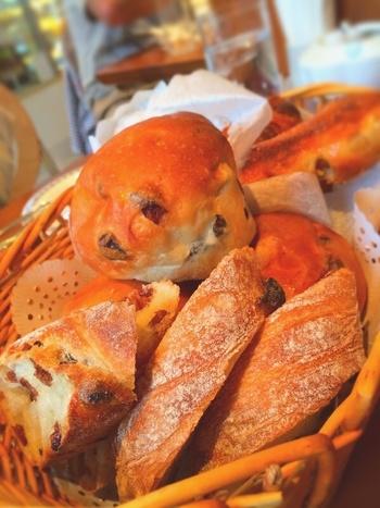 エシレバターを使ったパンや、鎌倉野菜を使ったパンなど、なんと100種類ものパンを味わえます♪  中でもおすすめなのが、遠くからでも行く価値のあるモーニング。 パンの盛り合わせ +日替わりスープorサラダ+お好きなお飲み物で1300円! ドライブがてら、葉山の朝を楽しみたいですね。