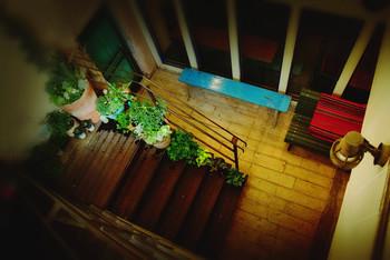 吹抜けの階段を下りていくとお店が…隠れ家的でわくわくしますね。