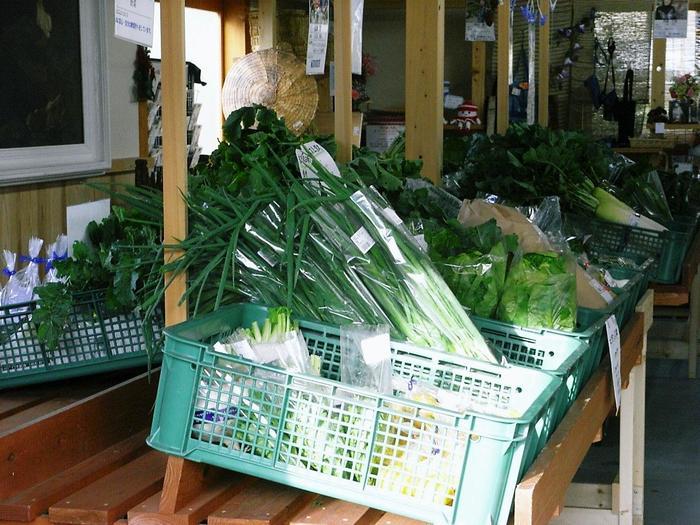 里の駅に並ぶのは、朝採れの新鮮な、旬の野菜。低農薬や有機無農薬の野菜も並んでいます。
