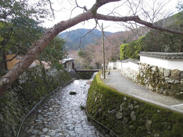【三千院には、寺院を挟んで小さな二つの川「呂川」と「律川」が流れています。声明の律旋法、呂旋法と律旋法に因んで付けられた名です。三千院参道にある石橋の下に流れているのが「呂川(りょせん)」、三千院の門前を過ぎた朱塗りの未明橋の下に流れるのが「律川(りつせん)」です。画像は「呂川」】
