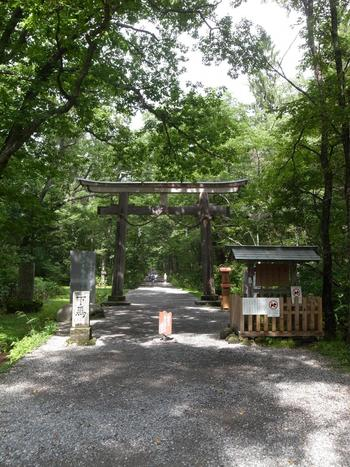 奥社の参道入り口。杉並木へは、この鳥居をくぐってしばらく歩きます。  周辺は広大な「戸隠森林植物園」となっています。