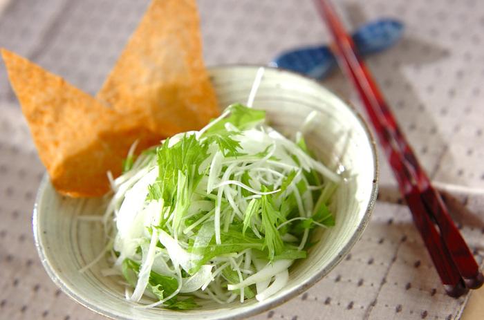 白髪ねぎと水菜、玉ねぎをあわせたサラダ。味付けに使ったのはごま油とお塩だけ!旬で美味しいお野菜は、素材そのものの味を活かした食べ方が◎