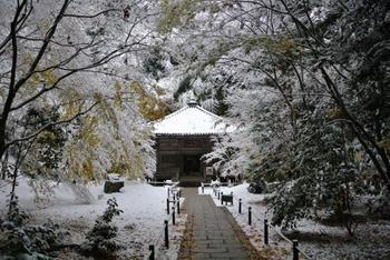 瑞巌寺に隣接している円通院は、伊達政宗の孫、光宗の霊廟として開山しました。ひっそりと佇む霊屋は国の重要文化財となっています。厨子にはハートやダイヤなどの模様が描かれており、当時から西洋と繋がりがあったことを示しています。