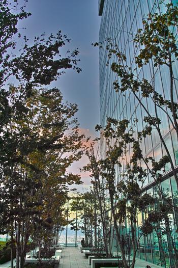 美術館のある16階には、緑豊かな庭園も。すがすがしい眺望はもちろん、夕日がビルに反射して美しく光る日の入り前の時間にぜひ訪れて。