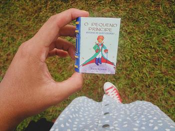 不思議な魅力のあるバオバブの木ですが、フランス人の飛行士・小説家のアントワーヌ・ド・サン=テグジュペリの小説『星の王子さま』(ほしのおうじさま、フランス語原題:Le Petit Prince、英語: The Little Prince)に登場しています。
