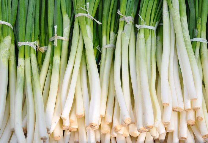 冬に旬を迎えるネギ。旬の野菜は美味しさもピーク、そしてお値段も手頃になるのがうれしい。冬野菜のなかでも白ネギは栄養も豊富で、この時期は甘味が増すことで知られています。