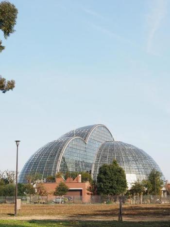 3つのドーム型の外観が目を引きます。温室の暖房や館内の冷暖房は清掃工場のゴミ焼却熱を利用しているので、地球にも優しい造りになっています。