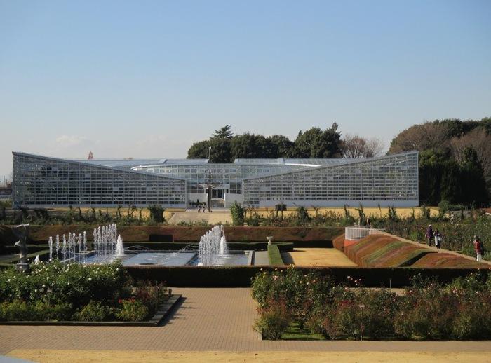 熱帯の花木室・熱帯スイレン室・ベゴニア室などがあり、2016年5月に、約1300品種を有する大温室にリニューアルオープンしました。
