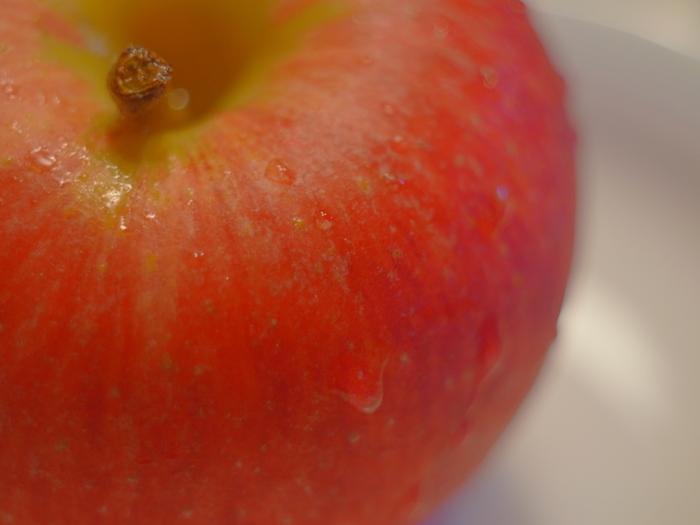 現在、一般的に食べられている西洋りんごは明治期に日本に渡来したもので、古来よりあった観賞用の和りんごとは全く別のものです。日本で初栽培されたのは、なんと北海道。その後、青森県で栽培技術が広まったとされています。