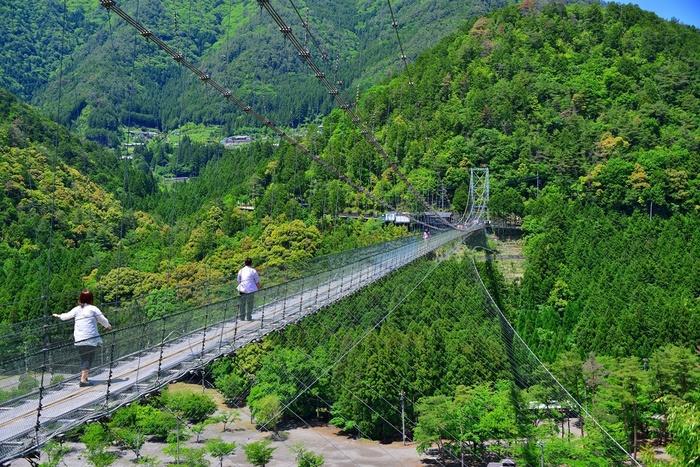 はるか下方を十津川が流れ、二つの山を結ぶように架けられた「谷瀬(たにぜ)の吊り橋」。長さ297メートル・高さ54メートルもある巨大な橋で、十津川村で一番スリルを感じられる場所です!