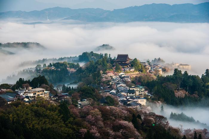 堂々たる佇まいで吉野山に鎮座する金峯山寺は、神秘的な魅力を持っています。雲海と霧の中から金峯山寺が荘厳な姿を現す様子は、まるで仙人の住まいを訪れたような錯覚を覚えます。