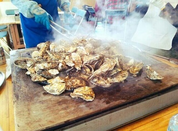 豪快に蒸し焼きにされる牡蠣。火が通り少し口が開いた牡蠣にナイフを差し込んで殻を自分で開けるのも、焼きガキハウスならではの楽しみです。