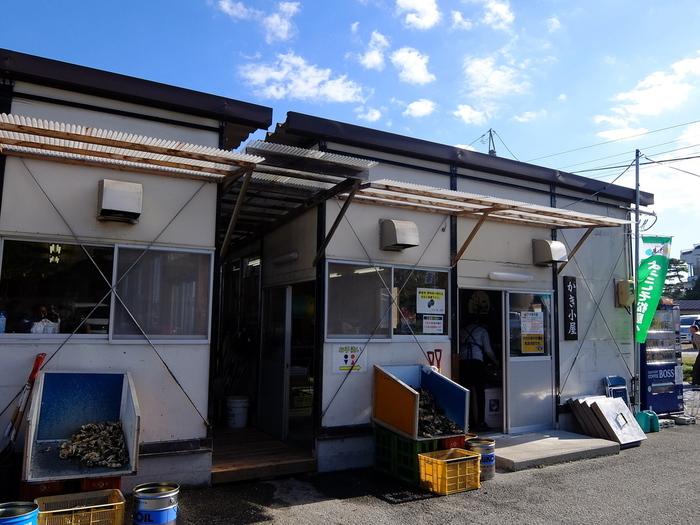 冬季限定で営業する「かき小屋」。松島の主な見所から少し場所は離れますが、冬になると多くの人が美味しい牡蠣を求めて訪れます。