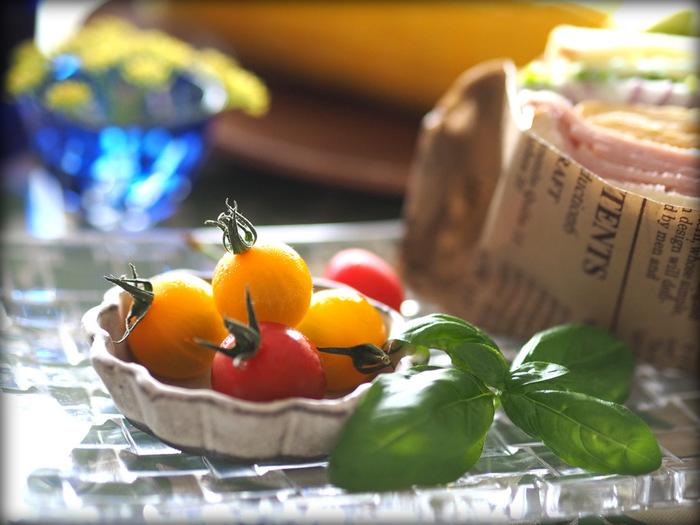 いかがでしたか? 栄養たっぷりでアレンジも自在なミニトマト(プチトマト)。イタリアでは「トマトが赤くなると医者が青くなる」ということわざがあるほど栄養満点で、健康に欠かせない野菜です。今まで生でしか食べなかったという方も、この機会にぜひ新しいレシピにチャレンジしてみてください♪